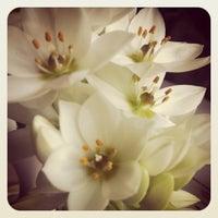 Снимок сделан в Luciano пользователем Maria B. 4/17/2012