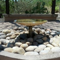 Photo prise au Desert Botanical Garden par Stephen B. le8/4/2012