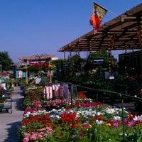 9/10/2011에 Cameron W.님이 Armstrong Garden Centers에서 찍은 사진