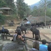 Foto scattata a Maesa Elephant Camp da Bank K. il 12/9/2011