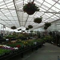 Watson S Greenhouse Nursery 6211