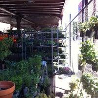 Das Foto wurde bei Urban Garden Center von Jonathan C. am 5/20/2012 aufgenommen