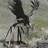 Снимок сделан в National Museum of Wildlife Art пользователем Liz M. 6/5/2012