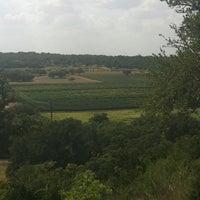 Снимок сделан в Driftwood Estate Winery пользователем Lauren E. 7/3/2012
