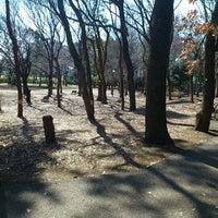 2/21/2012にAYUMIが蘆花恒春園 (蘆花公園)で撮った写真