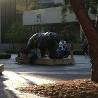 6/8/2012にTed T.がUCLA Bruin Statueで撮った写真