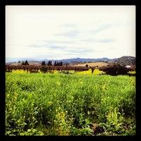 Foto diambil di Frog's Leap Winery oleh Tara C. pada 2/28/2012