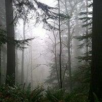 Снимок сделан в Forest Park - Wildwood Trail пользователем Katrisha T. 12/18/2011