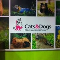 Das Foto wurde bei Cats & Dogs von Alex M. am 8/26/2012 aufgenommen
