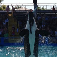รูปภาพถ่ายที่ Miami Seaquarium โดย Robb C. เมื่อ 2/23/2012