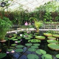 9/11/2011 tarihinde Keith W.ziyaretçi tarafından Royal Botanic Gardens'de çekilen fotoğraf