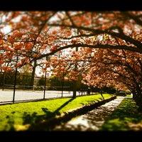4/22/2012에 Dana D.님이 Madison Park에서 찍은 사진