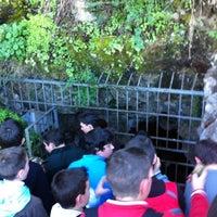 1/19/2012에 Antonio E.님이 Cueva de los Murcielagos에서 찍은 사진