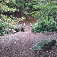 Снимок сделан в Arnold Arboretum пользователем Lina G. 10/18/2011
