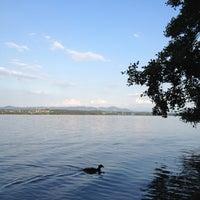 8/10/2012にMatthiasがNaturschutzgebiet Unterer Greifenseeで撮った写真
