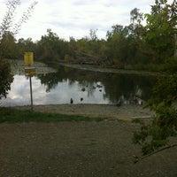 Photo prise au Arboretum Waterfront Trail par Allison S. le10/2/2011
