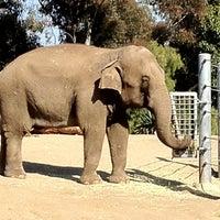 Das Foto wurde bei Elephant Odyssey von Ricardo S. am 6/1/2012 aufgenommen