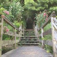 Снимок сделан в Filbert Steps пользователем Winnie Y. 6/5/2012