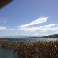 4/28/2012にMarkus T.がNaturschutzgebiet Unterer Greifenseeで撮った写真