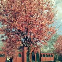 Foto tomada en McCarren Park por Amanda G. el 3/13/2012