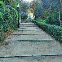 1/9/2012にSergi N.がJardins de Laribalで撮った写真