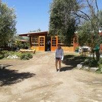Foto tomada en El Oasis por Gustavo R. el 3/1/2012