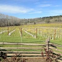 Foto tirada no(a) Navarro Vineyards & Winery por Karla em 2/19/2012