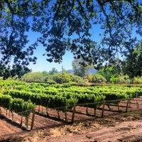 7/30/2012にJenny P.がLincourt Vineyardsで撮った写真