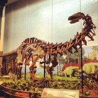 Foto tomada en Carnegie Museum of Natural History por Julian P. el 8/20/2012
