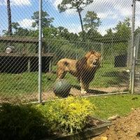 Foto tirada no(a) Alabama Gulf Coast Zoo por Tisha L. em 4/20/2012