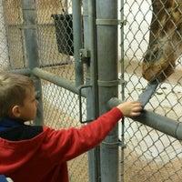 2/11/2012에 Mike D.님이 Cameron Park Zoo에서 찍은 사진
