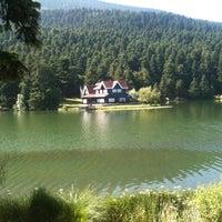 7/1/2012 tarihinde Burak K.ziyaretçi tarafından Gölcük Tabiat Parkı'de çekilen fotoğraf