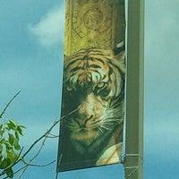 7/1/2012에 Krystal님이 Cameron Park Zoo에서 찍은 사진