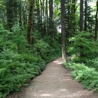 Снимок сделан в Forest Park - Wildwood Trail пользователем Alissa 5/19/2012