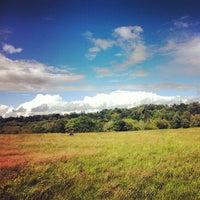 6/24/2012 tarihinde Genevieve S.ziyaretçi tarafından Hampstead Heath'de çekilen fotoğraf
