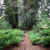 Снимок сделан в San Francisco Botanical Garden пользователем Nina 4/23/2012