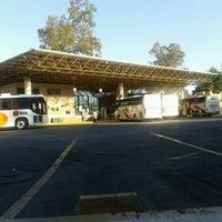 Casino de la selva bus station cuernavaca moneybags slot machine