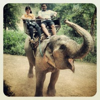 Foto scattata a Maesa Elephant Camp da Guntapong B. il 4/28/2012
