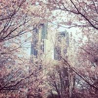 4/2/2012に48shoが新宿中央公園で撮った写真