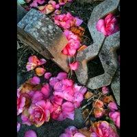 ... Photo Taken At Backyard Bird Shop By Zaq M. On 4/22/2012