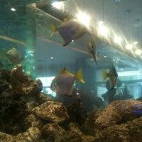Photo prise au Cape Town Fish Market par Funkymonkey le2/23/2012