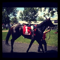 Foto scattata a Arlington International Racecourse da Jen M. il 8/19/2012
