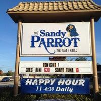 Sandy parrot fort myers