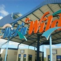 Foto tirada no(a) Wet'n Wild por Tales E. em 3/18/2012