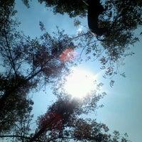 Снимок сделан в Jardin Morelos пользователем K.rmz 9/6/2012