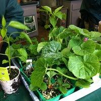 3/31/2012에 Li L.님이 Armstrong Garden Centers에서 찍은 사진