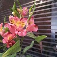 รูปภาพถ่ายที่ Olivetto Restaurante e Enoteca โดย Helena K. เมื่อ 8/30/2012