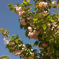 Foto tomada en Parc Joan Reventós por Nevermore el 4/24/2012