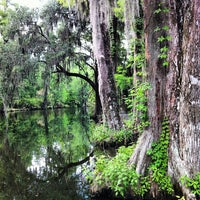 hrg2TbKIrHzzSmXiWDTUoneJTsYB56taTauNYhNnbHc Magnolia Plantation Slave Houses on magnolia plantation winter, magnolia plantation pool, magnolia plantation sc,