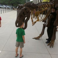 8/20/2012にLarissa A.がDenver Museum of Nature and Scienceで撮った写真